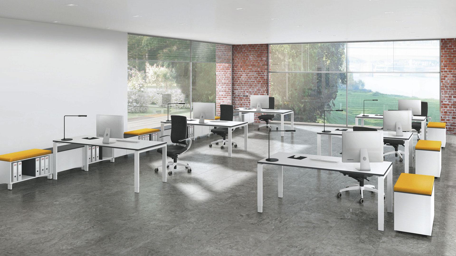 <p>Assmann Solos Tischprogramm</p>